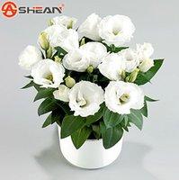 achat en gros de eustoma fleur-White Eustoma Graines Vivaces Plantes à Fleurs Balcon Potted Fleurs Graines Lisianthus pour Jardin de bricolage - 100 PCS
