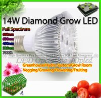 Wholesale lamp cup led plant growth lighting for hydroponics grow box bloom W Diamond LED Lamps for plants nm Red Blue led bulbs