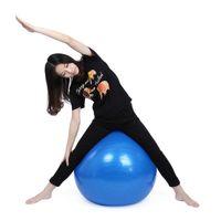 Wholesale Hot Sale CM High quality PVC Explosion proof Anti skid Wear Resistant Fitness Gymnastic Balance Exercise Training Yoga Ball Yoga Sport B