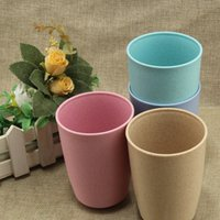 Wholesale Water Cup Wheat Straw Round healthy Drinking Water For Bottle Tea Cups