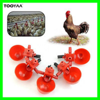 Wholesale Automatic Birds Chicken Drinking Water Bowls Cups Poultry Feeding Tools Equipments Coop Fowl Drinker