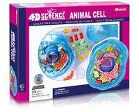 animal cells model - D Master animal cell anatomical Skeleton Model for sale dimensional toy anatomical model Medical Science education equipment