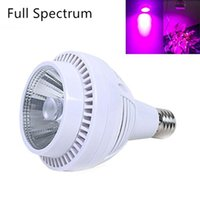 Wholesale Full Spectrum W LED COB Plant Grow Light Hydroponic Indoor Plants Flowering