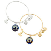 antique crystal bracelet - new style Alex and Ani The Lion Hakuna Matata Bangle Antique gold and silver popular Pure copper bracelet