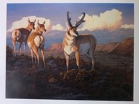 antelope animal - Pronghorn Paradise by Tom Mansanarez Pure Handpainted Antelope Art Oil Painting On Canvas customized size accepted skeb