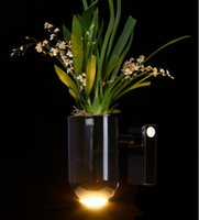 Wholesale 2017 led plant black wall lamp producing oxygen and purifying the air smart plant bathroom light indoor kind of lamp health lamp