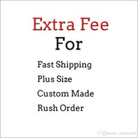 Cheap plus size prom dresses fast shipping