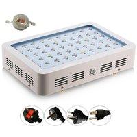 Wholesale Hot Sale W W W Double Chips LED Grow Light Full Spectrum For Veg Bloom Hydroponic Planting EU AU US UK Plug