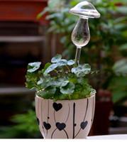 Wholesale The mushroom type watering the flowers water seepage device