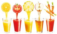 Wholesale High qulity slow juicer Stainless steel pomegranate juicing as see on TV