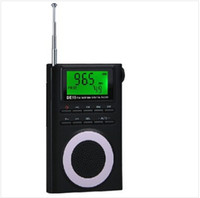 Wholesale Portable FM Stereo MW SW Digital Degen DE19 Radio DSP World Band Receiver clock radio portatiles usb frequency and LED backlight