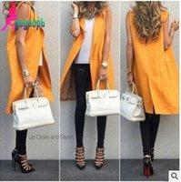 Wholesale Europe New Women Fashion Sleeveless Coat Lady Lapel Neck Outwear Girl Vests Coat Clothing AG04