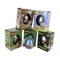 Wholesale Christmas Gift Growing Pet Hatching Egg Hatching Animals Eggs Growing Dinosaur Variety Of Animals Eggs Can Hatch Out Animals Creative Toys