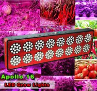 Wholesale new year manufacture series LED grow light with w w w w Red Blue led grow lights for Plants indoor