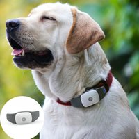 Wholesale Appello P GPS Vehicle Tracker GPS Tracker For Persons And Pets GPS Tracker G G Small Pet GPS Tracker With Free Collar