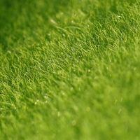 aritificial grass - 15 x cm Aritificial Home Garden Decor Grass Lawn Turf DIY ZAKKA Moss Bonsai Ornament