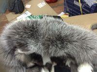 Precio de Líneas blancas-Qltrade_1 Mr Mrs itlay revestimiento de piel de zorro blanco negro mini parka con revestimiento de piel plata MMI snow coats