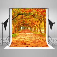 beautiful children photos - 5x7ft x220cm Autumn Natural Scenery Photo Backgrounds Beautiful Tree Photography Backdrops for Wedding Wrinkles Free