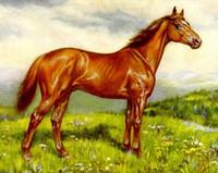 Paisaje rural enmarcado de la castaña de caballo de la raza de Inglaterra del pura sangre, pintura al óleo pintada a mano genuina de la pintura al óleo del arte de la lona multi tamaño HS048
