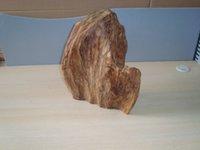 agarwood tree - 3 Kg Nature Agarwood Gaharu Aloeswood Chen Xiang tree root