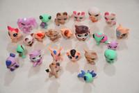 Wholesale Cute Kinds - 24 pcs a lot Random LPS cute quality animals pet shop toys cat dog Dachshund lion littlest horse kitty 72 kinds