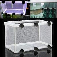 Wholesale New Fish Breeding Incubator Net Hanging Fish Hatchery Isolation Box For Aquarium Accessory
