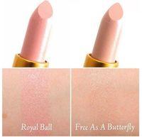 Wholesale Cinderella Lipstick Mate Brand Makeup Set Nude Lipsticks Sale