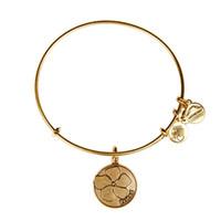 Wholesale original Alex and Ani Friend Charm Bangle Christmas pop jewelry adjustable shrinkable brass bracelet Jewelry factory