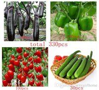 Wholesale Hot selling total cucumber seeds pepper seeds long eggplant seeds tomato seeds