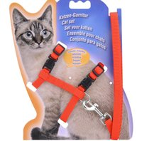 Wholesale Fashion Nylon Small Cat Harness Red Blue Small Cute Pet Lead Rope For Small Cat Teddy Training Leash Collar Color