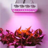 Wholesale Full Spectrum W led grow light for hydroponic greenhouse Grow Tent box suitable for all stages of plant Veg flower fruit