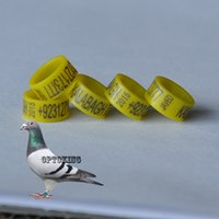 Wholesale retail mm inner diameter plastic pigeon ring checken leg ring leg band telephone name