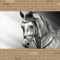 Конные фотографии Цены-Wall Art ЛОШАДЬ холст Плакат Печать изображений Детская комната Декор Холст плакат