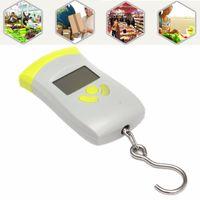 Wholesale 50kg Portable Handheld Digital Luggage Hanging Fishing Balance Weighing Scale