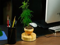 Wholesale Magnetic Levitating Bonsai Flower Pot Potted Plant Novelty Decoration in house and office new and hot sale