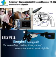 Wholesale Veterinary B Ultrasound EW B10V With Rectal Vet Animals Pregnancy with veterinary headlight and magnifier for animals exam