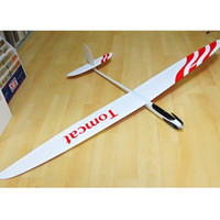 Wholesale RCRCM mm Wingspan Glider TOMCAT Plane Model Toy Plane Made of Fiberglass Carbon It Can be Customized