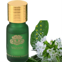 Wholesale Super Mint pure essential oil ML from Vazzini D14