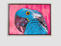Wholesale Huge beauty of the modern abstract parrot hand painted oil painting decorative arts on the canvas Unframed