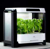 Wholesale Grow vegetables machine plantvege tool family gardens in desk hydroponic vegetables