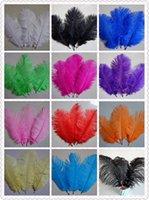 Wholesale 200 Ostrich Feather inch cm Wedding Decoration Party Plumage Decorative Celebration Color C007