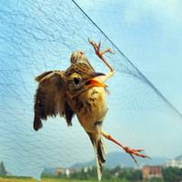 Precio de Precio más bajo por mayor de china-Lazo al por mayor / bajo del pájaro del precio / red del pájaro / con alta calidad envío libre de China