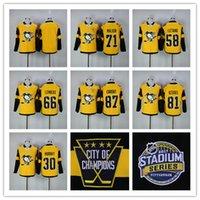 Bon Marché Série de hockey-2017 Stadium Series Pittsburgh Penguins 87 Sidney Crosby Evgeni Malkin Kris Letang Matt Murray 81 Phil Kessel jersey de hockey cousu