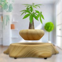 Wholesale Magnetic Floating Real Plant in the air Floating Levitating Plant pot with high quality and new design in office and house