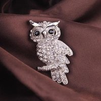 abc pins - Fashion Delicate Owl Lovely Crystal Acrylic Animal Brooch For Jewelry Pins ABC