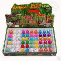Wholesale 5 Designs cm box Growing Dinosaur Egg Pet Hatchimals Animals Eggs Growing Dinosaur Creative Hatch Out Animals CCA5339 set