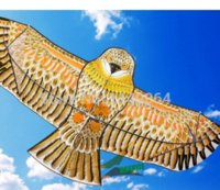 Wholesale high quality m golden eagle kite with handle line games bird kite weifang chinese kite flying dragon hcx