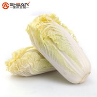 baby vegetable seeds - 200 Baby Cabbage Seeds Easy to Grow Strong in Winter Nutritious Cabbage Vegetable Seeds Brassica Oleracea Plants
