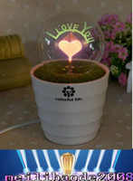 НОВЫЕ Комнатные растения ночные огни 250G / шт Пара фейерверк ночью свет Романтический 220v Тень Материал Пластик MYY