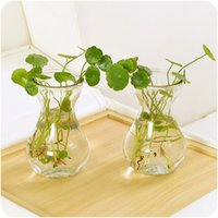 Wholesale creative clean glass vases living room decrate green plant vases or hold the water milk etc